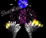 Фейерверк Wild Dances (версия от 13.08.2013 г. Энергодар День Независимости)