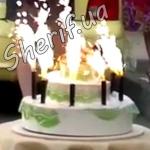 Торт с петардами (шутка)