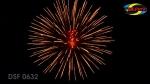 DSF 0632 brocade corwn w red pistil core