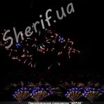 Фейерверк Ах, Одесса (версия от 08.08.2011) 12