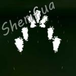 Фейерверк Vangelis+Evolution (День Строителя 2012) 2