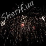 Фейерверк Марк Бернес Темная ночь 9 мая 2012 5